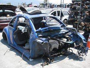 Beetle salvage